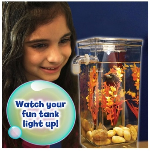 my-fun-fish-tv-new-products-goldfish-mini-tank-filter-or-aquarium-mini-transparent-11
