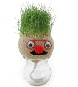 absorbent-grass-head-doll-or-grow-plant-seed-garden-42